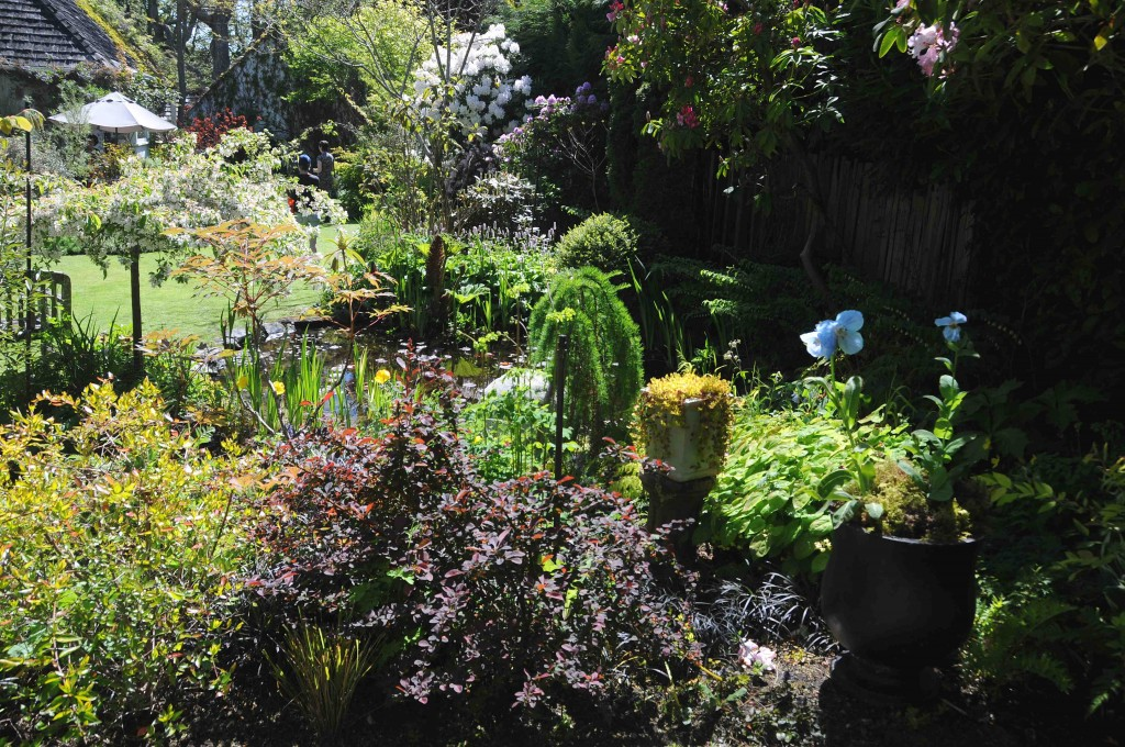 Mother\'s Day Musical Garden Tour - Victoria Conservatory of Music ...