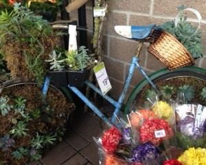 Bike planter photo 2